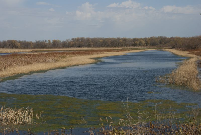 Destination of the Day: Ted Shanks Conservation Area