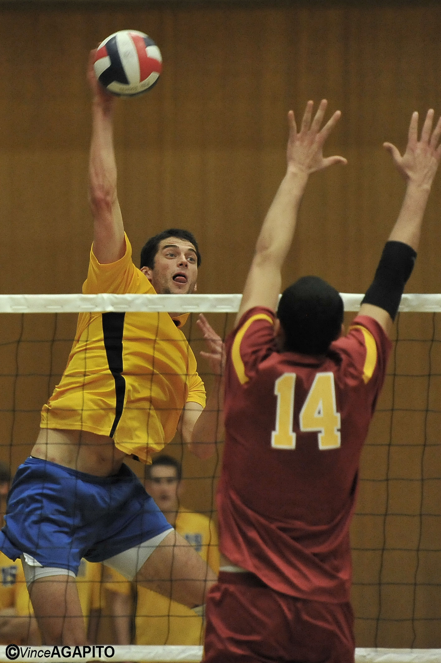 UCSB men's volleyball