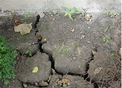 Foundation cracked soil