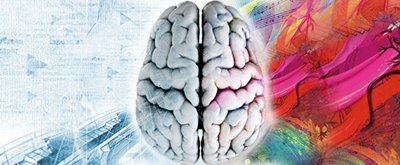 Branding With Both Sides of the Brain Optimizes Your Brand's Performance