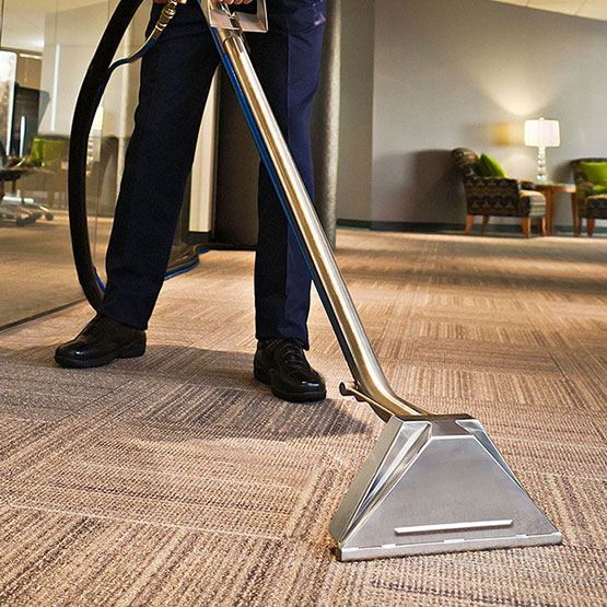 Blue Water Cleaning • Carpets, Mold