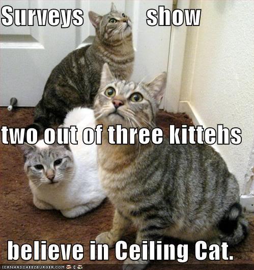 Ceiling Cat believe