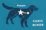 canis minor 2 stars
