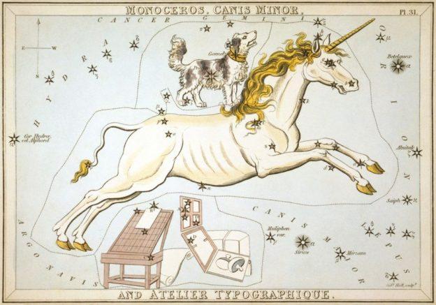canus minor unicorn