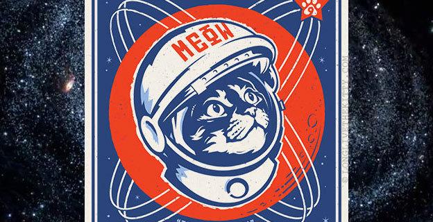 chairman meow cosmos