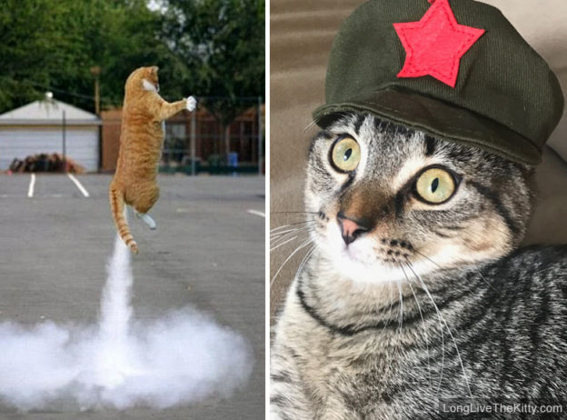 chairman meow missile test