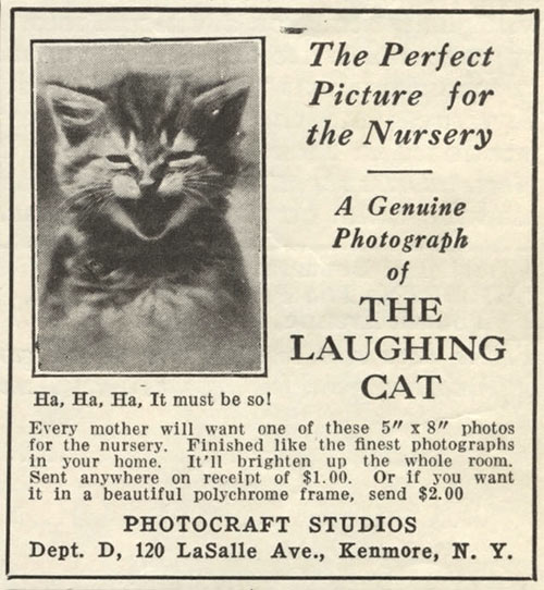 early lolcat poster
