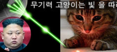 kim jong un cat space laser