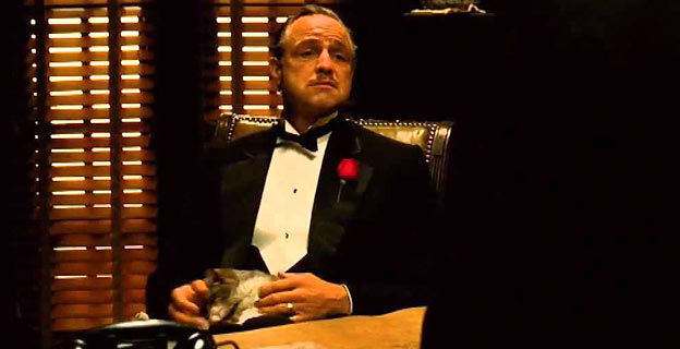 Don Corleone with cat