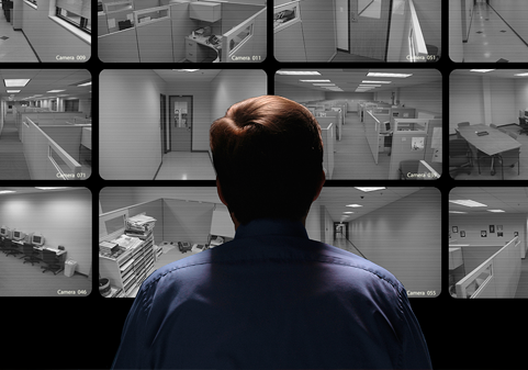 Video Surveillance Options from TelNet Group
