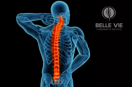 back pain - dolor de espalda sintomas belle vie - BACK PAIN