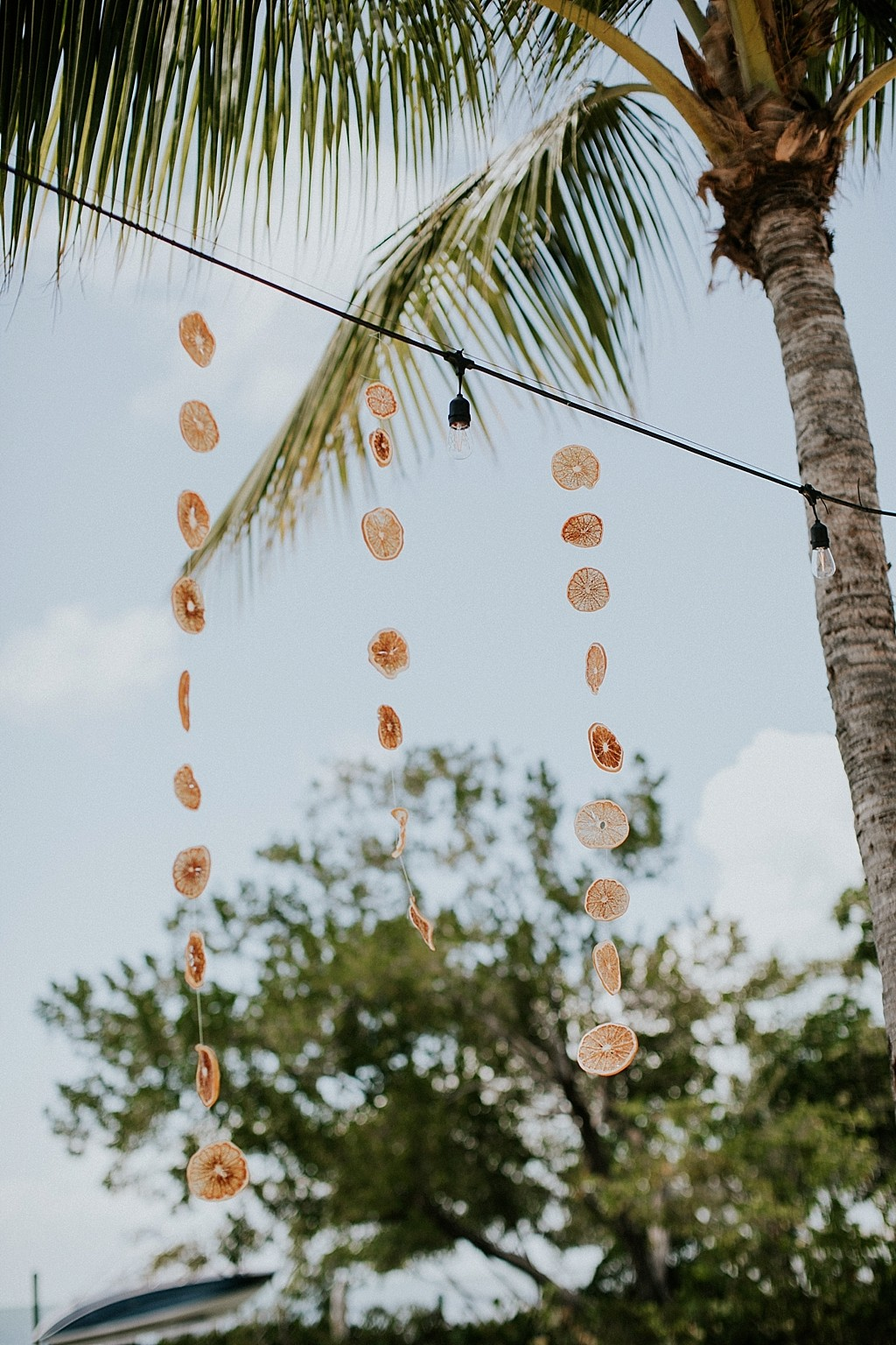 dried oranges wedding decorations