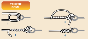 Image of fishing line and a hook with step-by-step instructions for tying a trilene knot