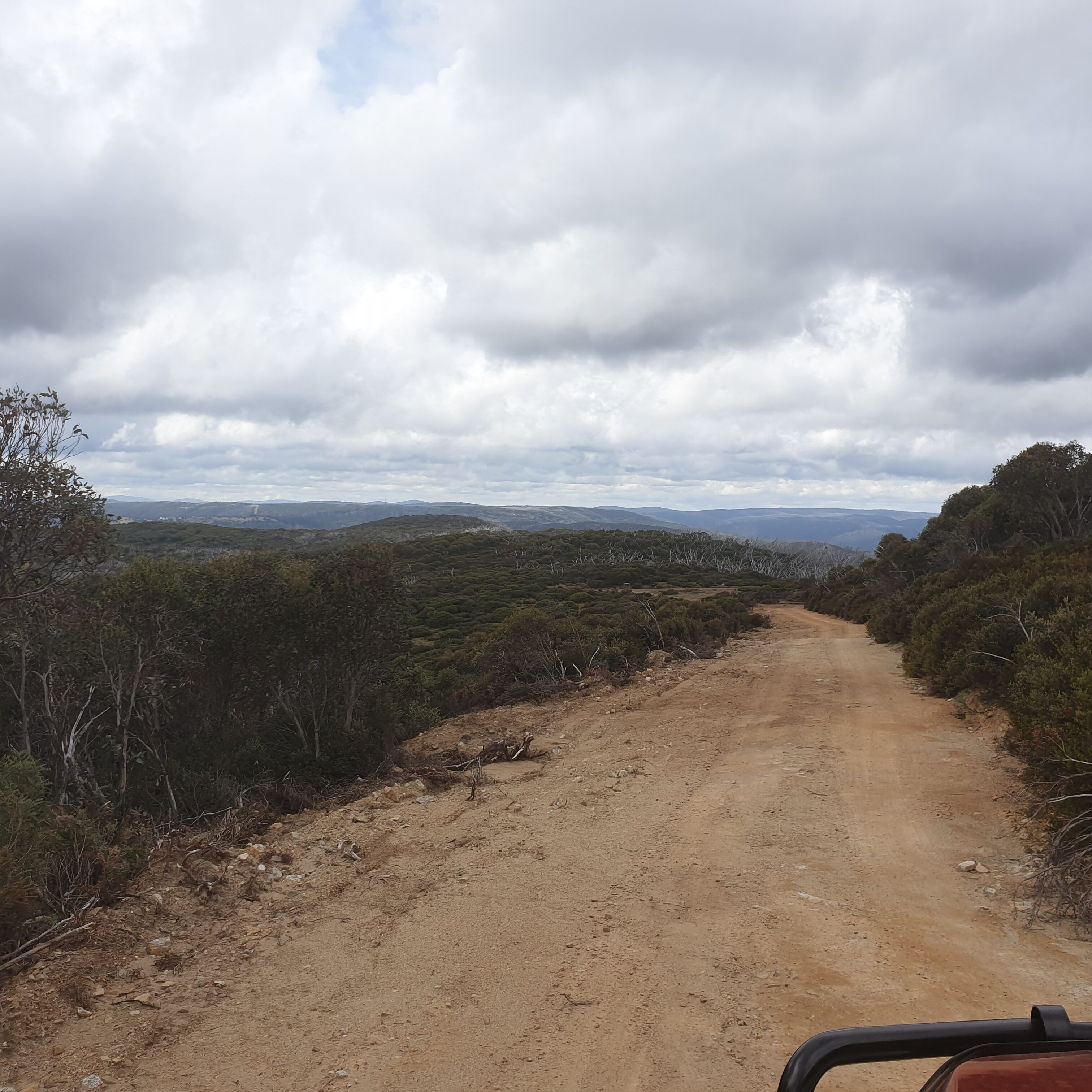 Blackjack Trail, Kosciuszko National Park