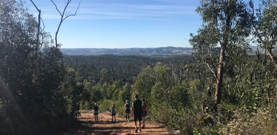 The Devil's Gully (Kersbrook) Social Run