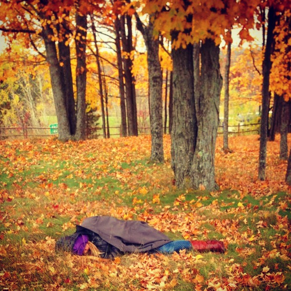Tip #2: Don't drive 12 hours to gigs.  In fact, don't drive sleep deprived!  Have a buddy,  take a nap at rest stops like me here,  crashed out in the leaves ...