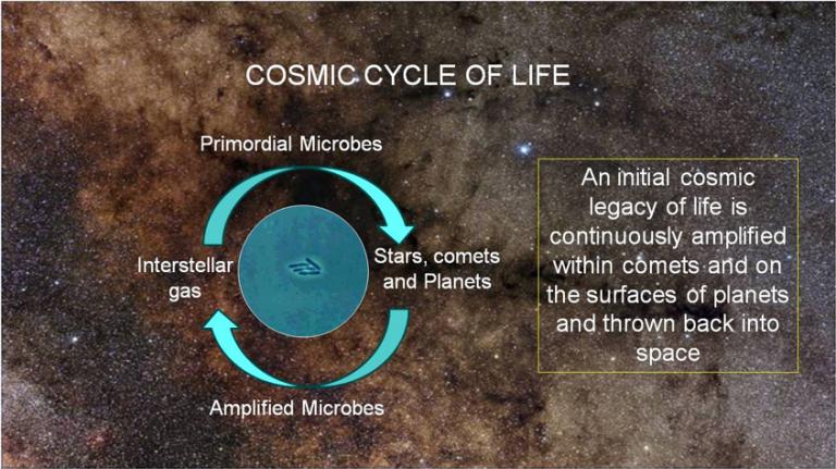 COSMIC CYCLE OF LIFE 5