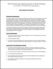 Mentorship program 11