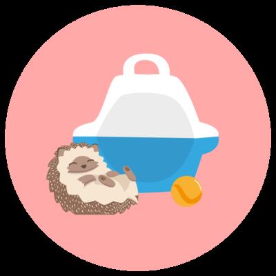 Eribebé + Accesorios