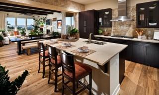 ES_Coastal-Reef_Sanibel_int_kitchen_La-Costa-Oaks