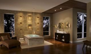 imagine_photos-2012-02-03-CSTRF-Sanibel-bath