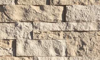 Seashell Coarse Cut Stone