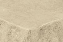 ES MC Acc- Color Coastal Sand Cropped 030416