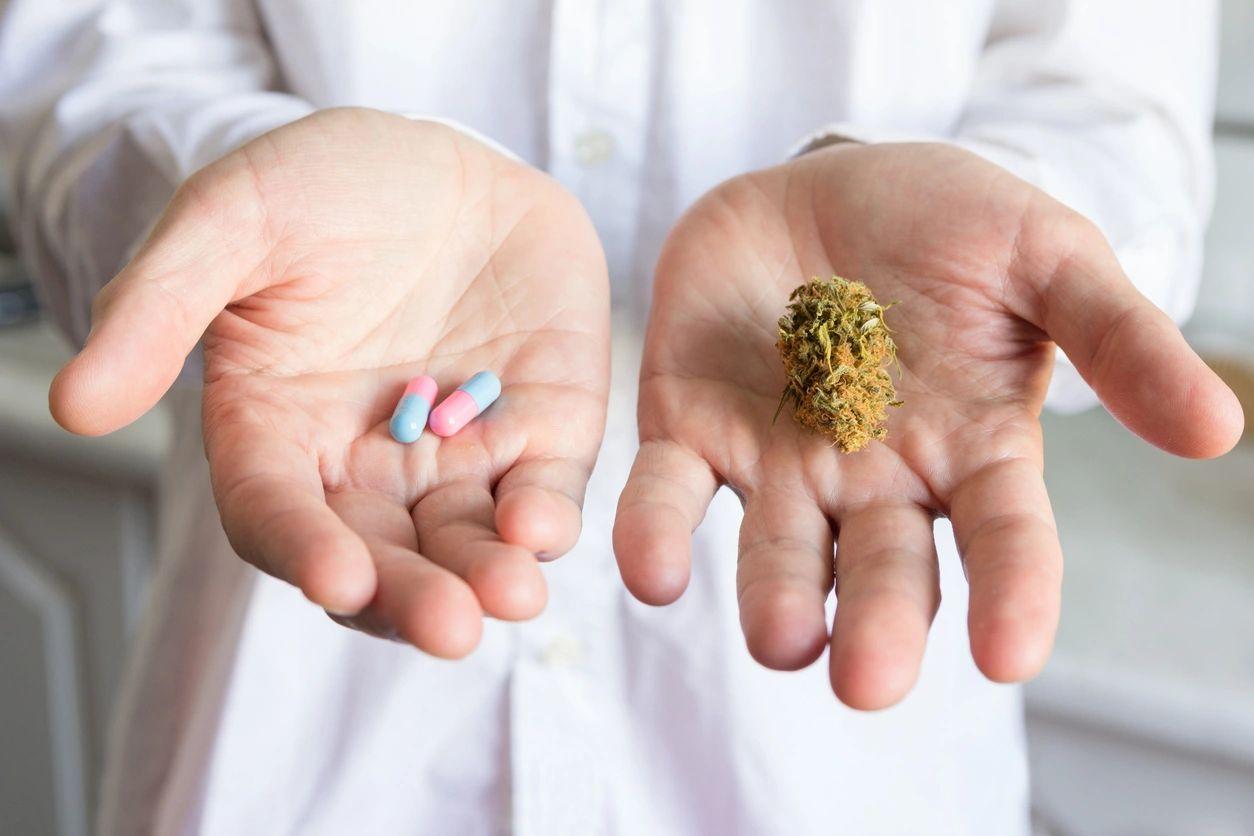 Marijuana Doctor Hollywood Easy Clinic