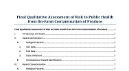 final-qualitative-assessment