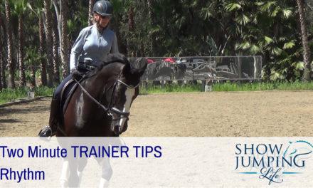 Equestrian Training Scale: Rhythm – Video