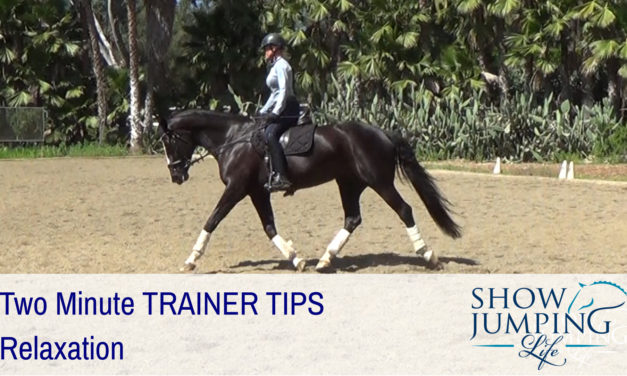 Equestrian Training Scale: Relaxation – Video