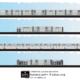 Expressway Logistics Color Elevation 2021