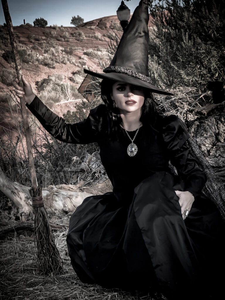 The Everything Housewife, Author of The Realm of Halloween Series