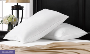 groupon goods, groupon, hosting family, holiday must haves, home goods, pillows, traveling, groupon deals, savings on pillows