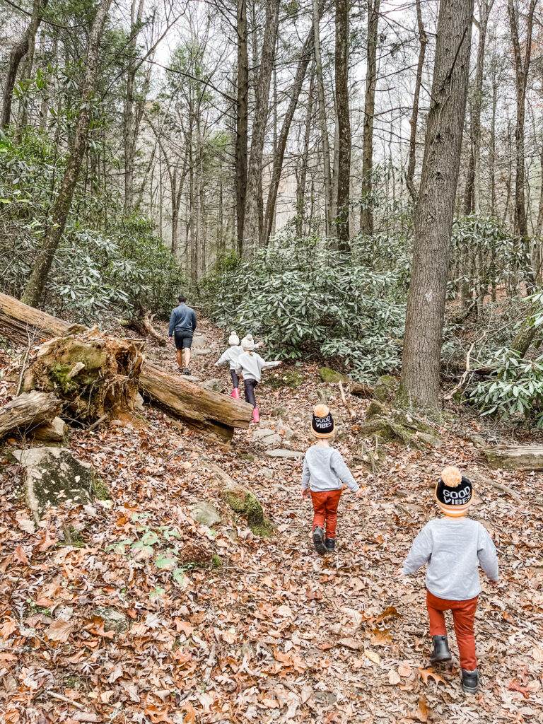 hikes for kids, kid friendly activities in blue ridge Georgia, things to do with kids in blue ridge Georgia