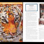 2016  / Le Projet de  l'école Sherwood Forest. La guilde dans le numéro de juin/juillet/août du Rug Hooking Magazine!___The Sherwood Forest Project.  The Guild at  the June, July, August edition of Rug Hooking Magazine