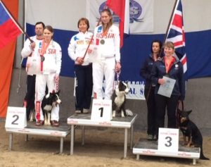 All-Around World Agility Champions-Midi