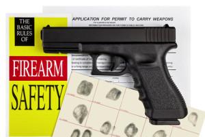 Pistol Handgun with Firearm Application and CCW Permit Fingerprint ID