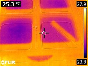 Thermal Image of hornworm rearing container 2 (23.8 to 27.9 C)