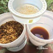 raw honey crush strain
