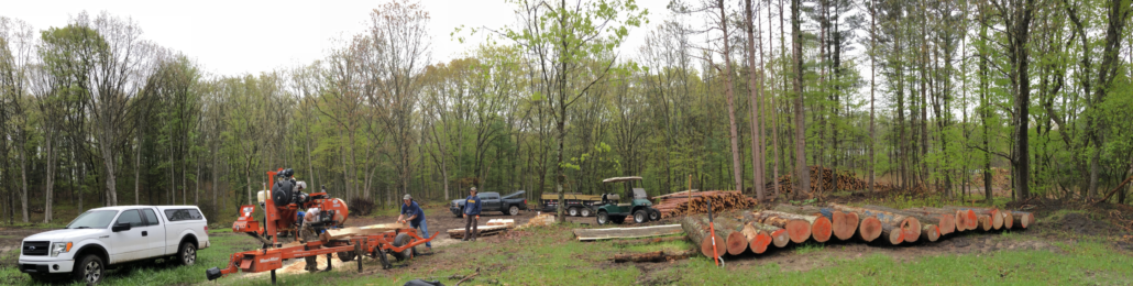 lumber milling how to site overview