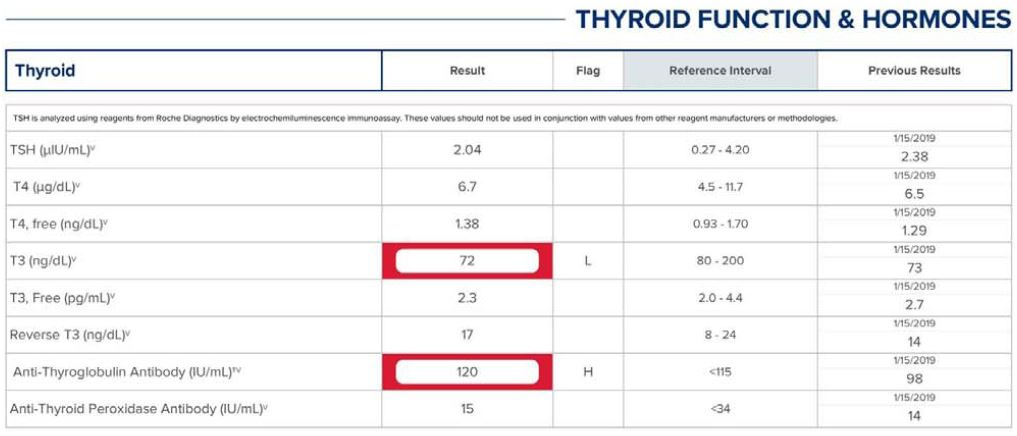 thyroid function blood tests