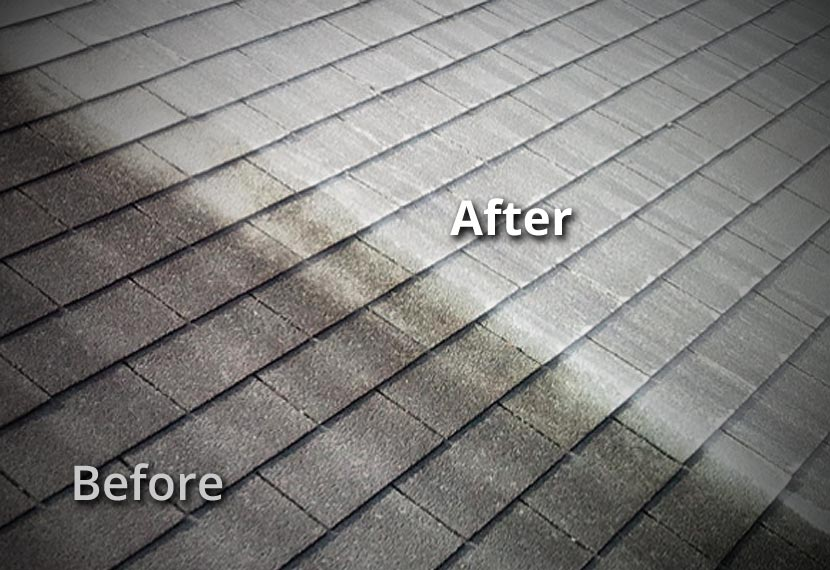 New Braunfels TX Roof Soft Wash Cleaning