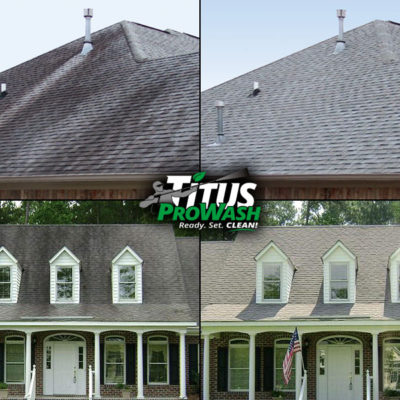 Examples of Roof Cleaning Before & After