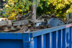 A Dumpster Service for the Fall