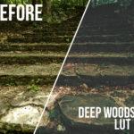 Rustic Woods LUT Pack
