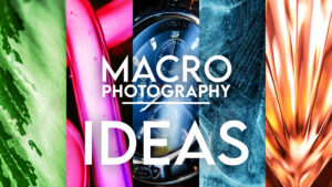 Creative Macro Photography Ideas