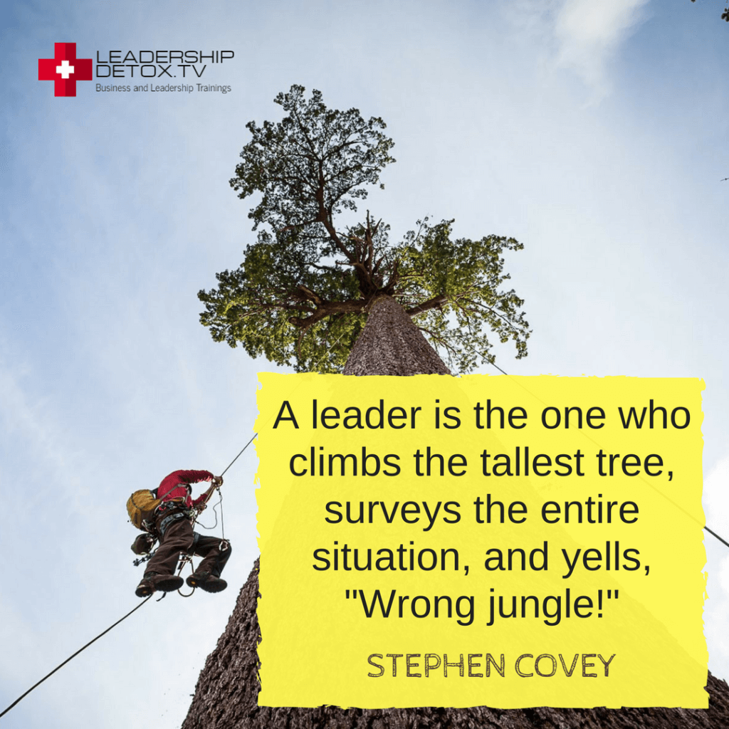 """Stephen Covey quote on priority: A leader is the one who climbs the tallest tree, surveys the entire situation, and yells, """"Wrong jungle!"""""""