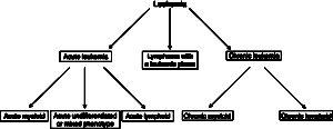 Leukemia classification