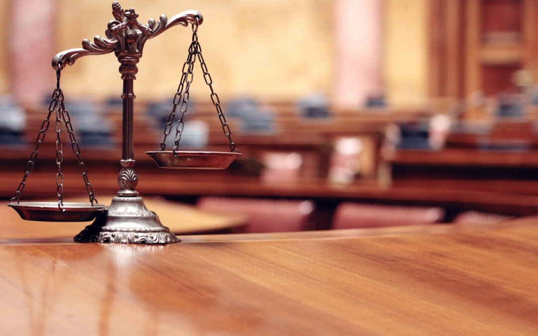 What is a Litigator?
